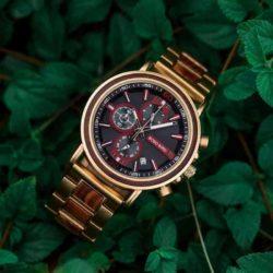 bobo bird wooden watches for men Schlosspark S18-4